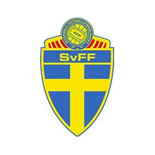 Sweden football team logo